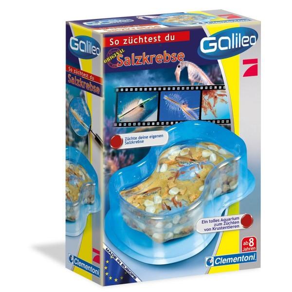 Clementoni 69937 - Galileo - Original Salzkrebse