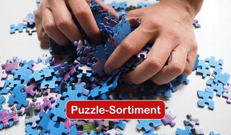 media/image/WS-Puzzlebanner.jpg