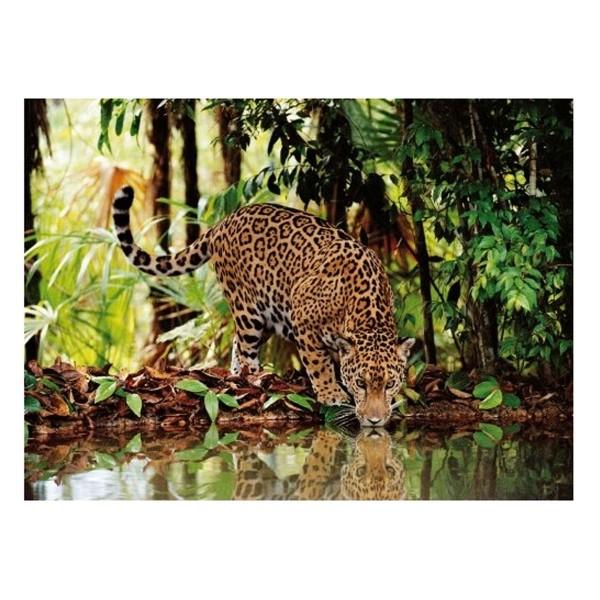 Clementoni 97789 - High Quality Puzzle - Leopard, 2000 Teile